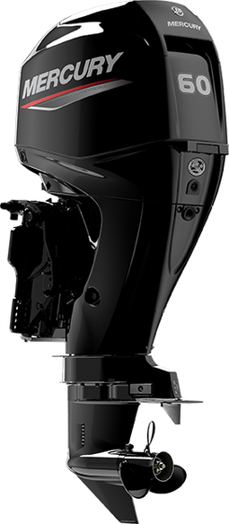 Mercury Fourstroke 60 EFI